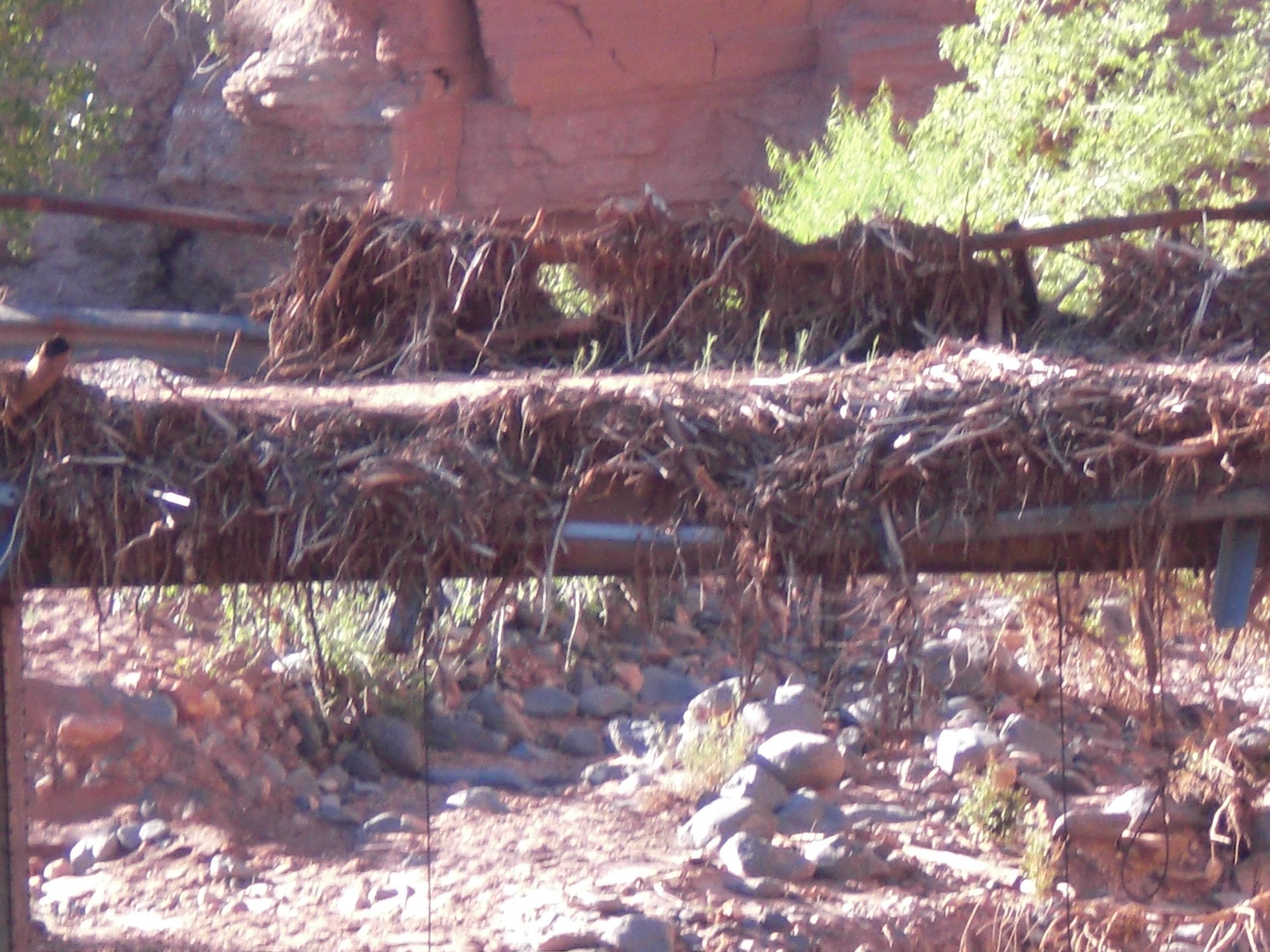 Sub Canyon 005